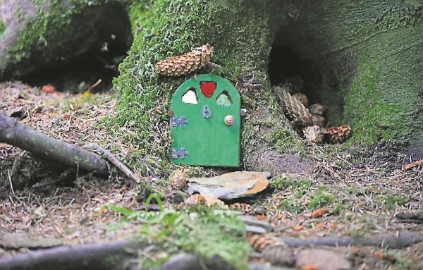 cork fairy woods door
